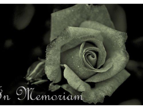 Arreglos Florales para Condolencias
