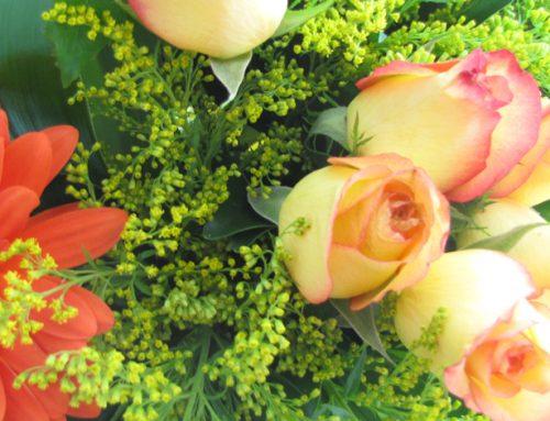 Flores Frescas a Domicilio